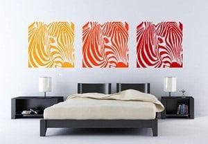 vinilos-decorativos-medellin-zebras-tricolor - copia